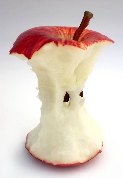 Apple core representing Core Energy Management Provided by Peak Energy Management